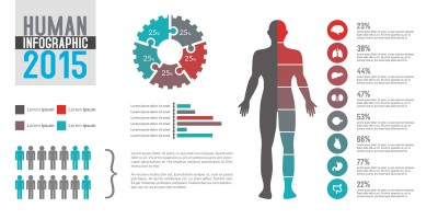 Human Infographics Elements for Photoshop PSD