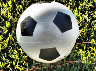 Free Soccer Ball Photo